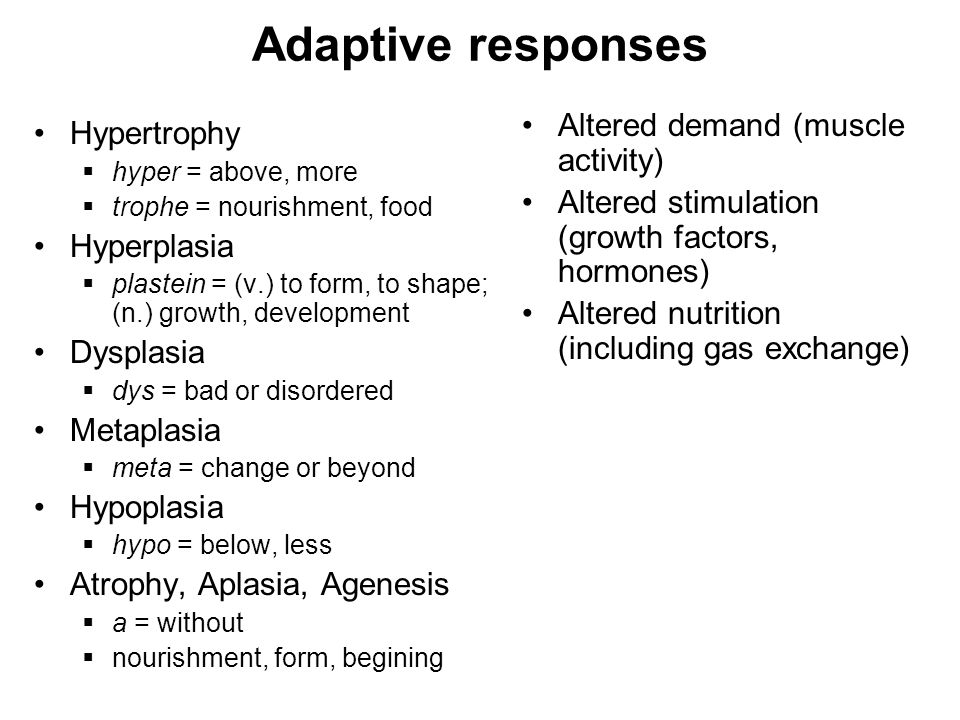 Adaptive responses Hypertrophy  hyper = above, more  trophe = nourishment, food Hyperplasia  plastein = (v.) to form, to shape; (n.) growth, development Dysplasia  dys = bad or disordered Metaplasia  meta = change or beyond Hypoplasia  hypo = below, less Atrophy, Aplasia, Agenesis  a = without  nourishment, form, begining Altered demand (muscle activity) Altered stimulation (growth factors, hormones) Altered nutrition (including gas exchange)