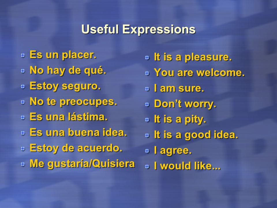 Useful Expressions Es un placer. No hay de qué. Estoy seguro.