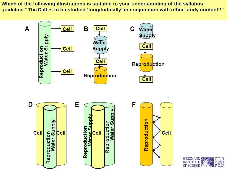 2005-01–25 רחל כהן. ה D E F.. Water Supply Cell Reproduction C Water Supply Reproduction Cell A B Reproduction Cell Reproduction Water Supply Reproduc