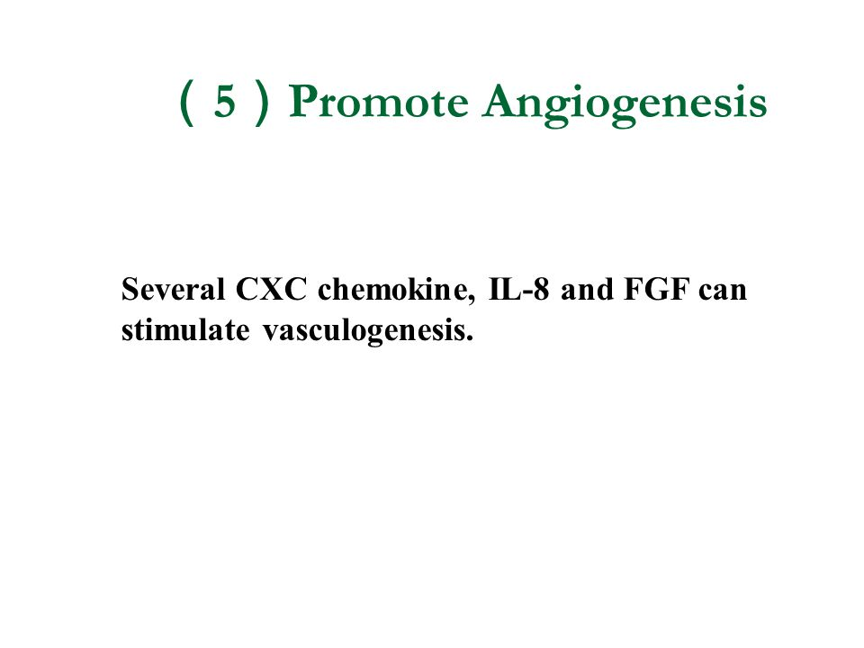 ( 5 ) Promote Angiogenesis Several CXC chemokine, IL-8 and FGF can stimulate vasculogenesis.