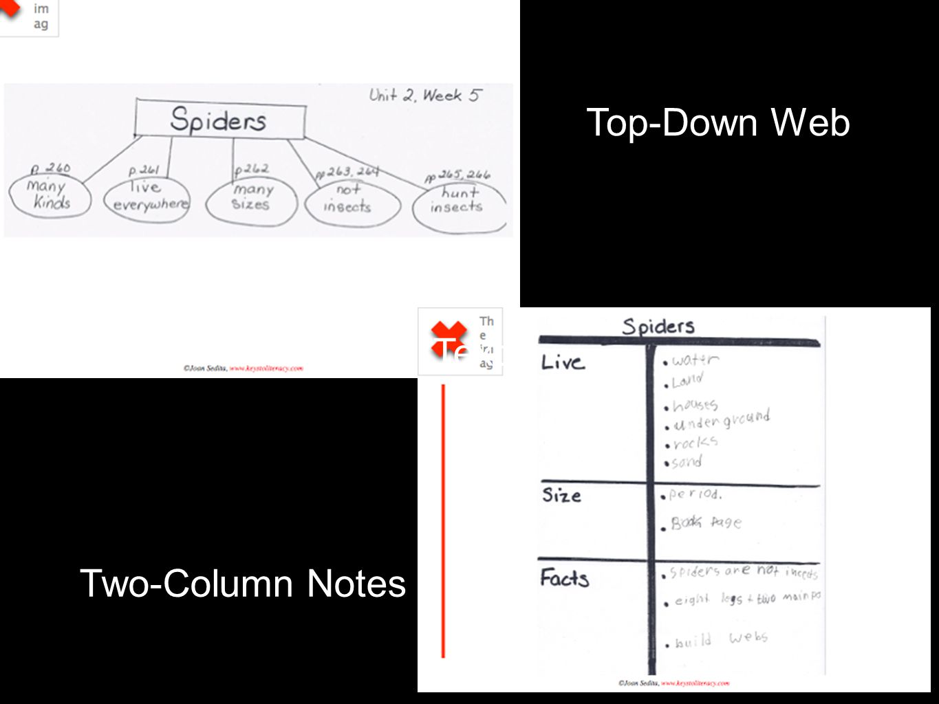 Top-Down Web Two-Column Notes