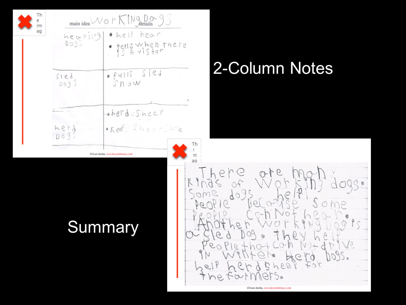 Text 2-Column Notes Summary