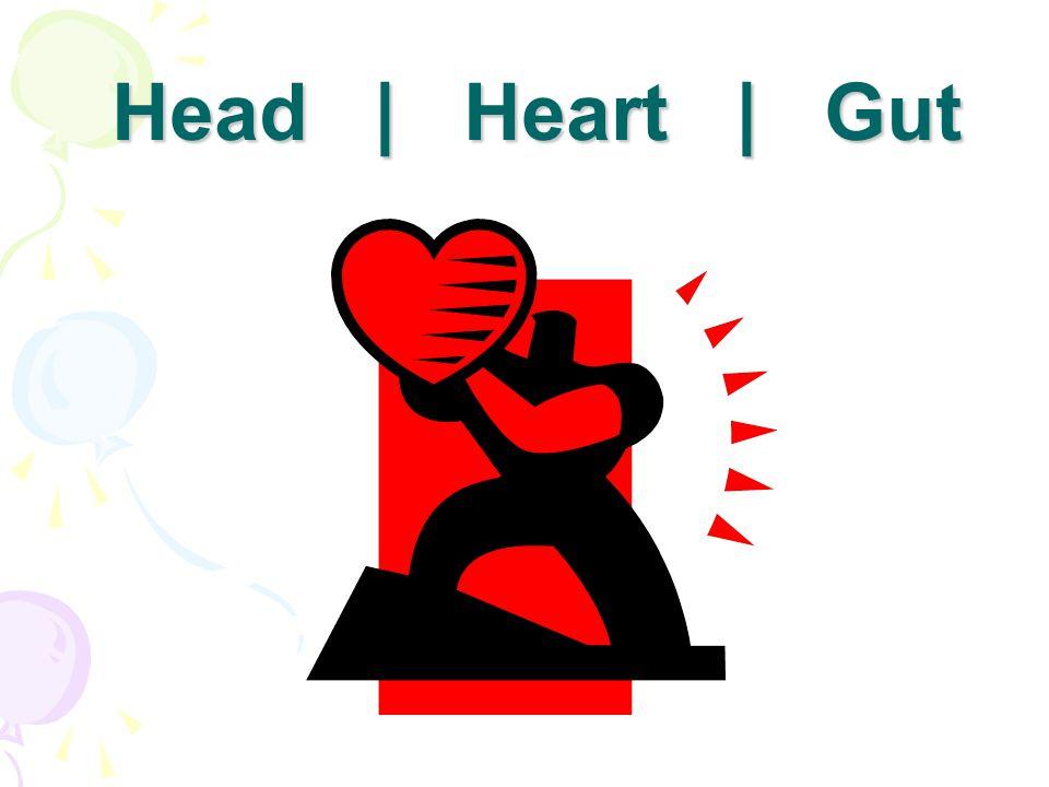 Head | Heart | Gut