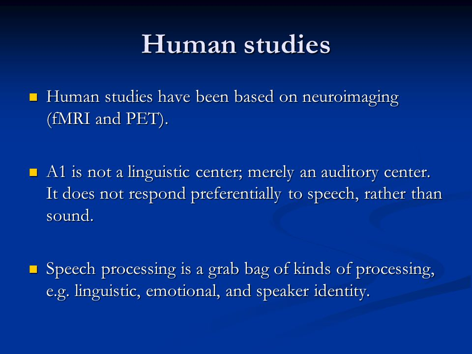 Human studies Human studies have been based on neuroimaging (fMRI and PET). Human studies have been based on neuroimaging (fMRI and PET). A1 is not a