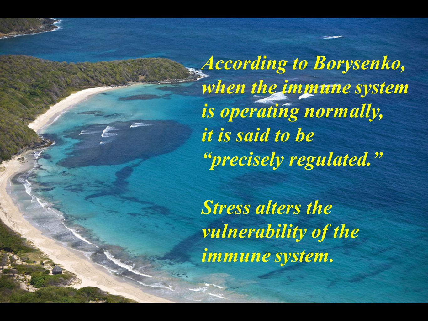 According to Borysenko, when the immune system is operating normally, it is said to be precisely regulated. Stress alters the vulnerability of the immune system.
