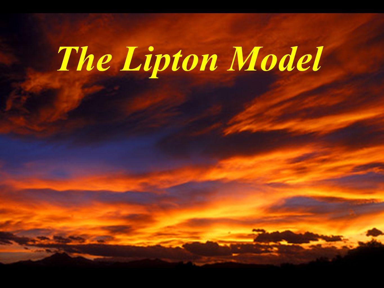 The Lipton Model