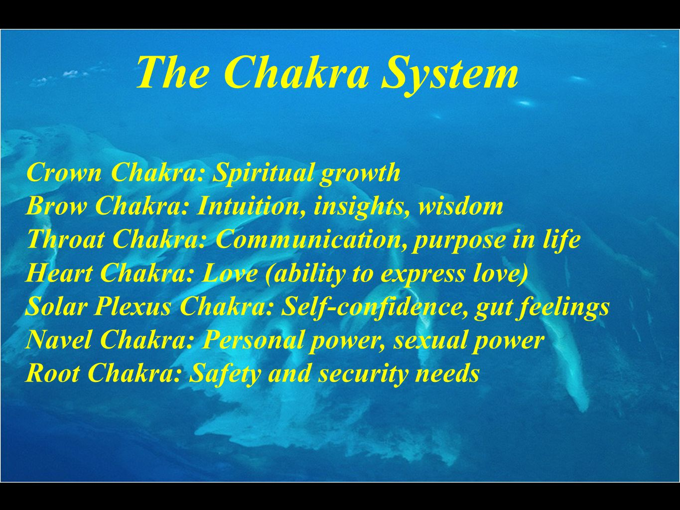 Crown Chakra: Spiritual growth Brow Chakra: Intuition, insights, wisdom Throat Chakra: Communication, purpose in life Heart Chakra: Love (ability to express love) Solar Plexus Chakra: Self-confidence, gut feelings Navel Chakra: Personal power, sexual power Root Chakra: Safety and security needs