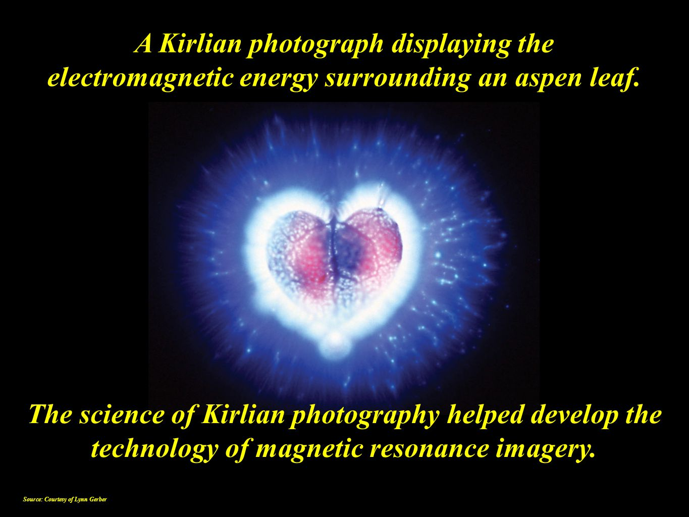 A Kirlian photograph displaying the electromagnetic energy surrounding an aspen leaf. The science of Kirlian photography helped develop the technology