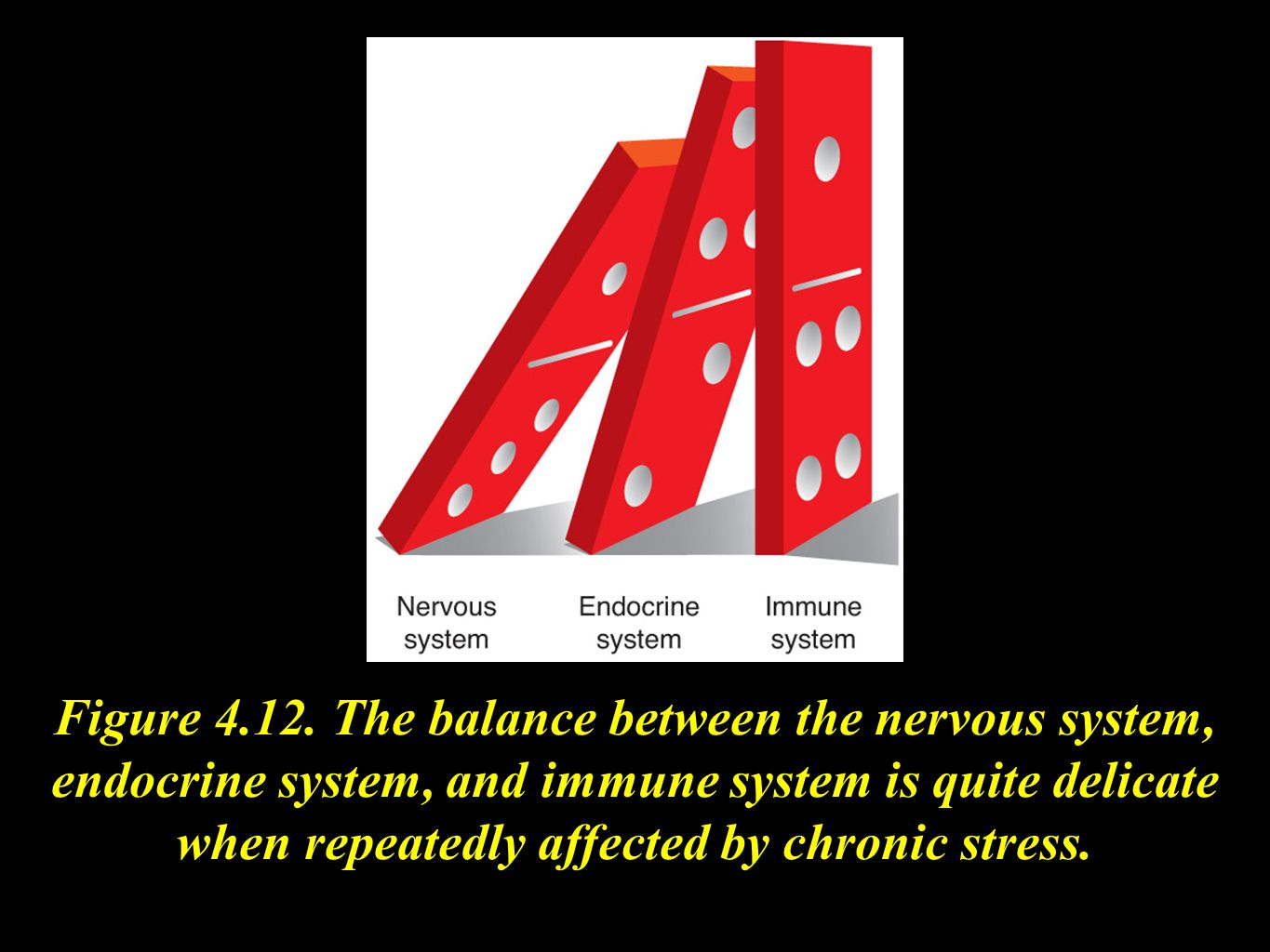 Figure 4.12. The balance between the nervous system, endocrine system, and immune system is quite delicate when repeatedly affected by chronic stress.