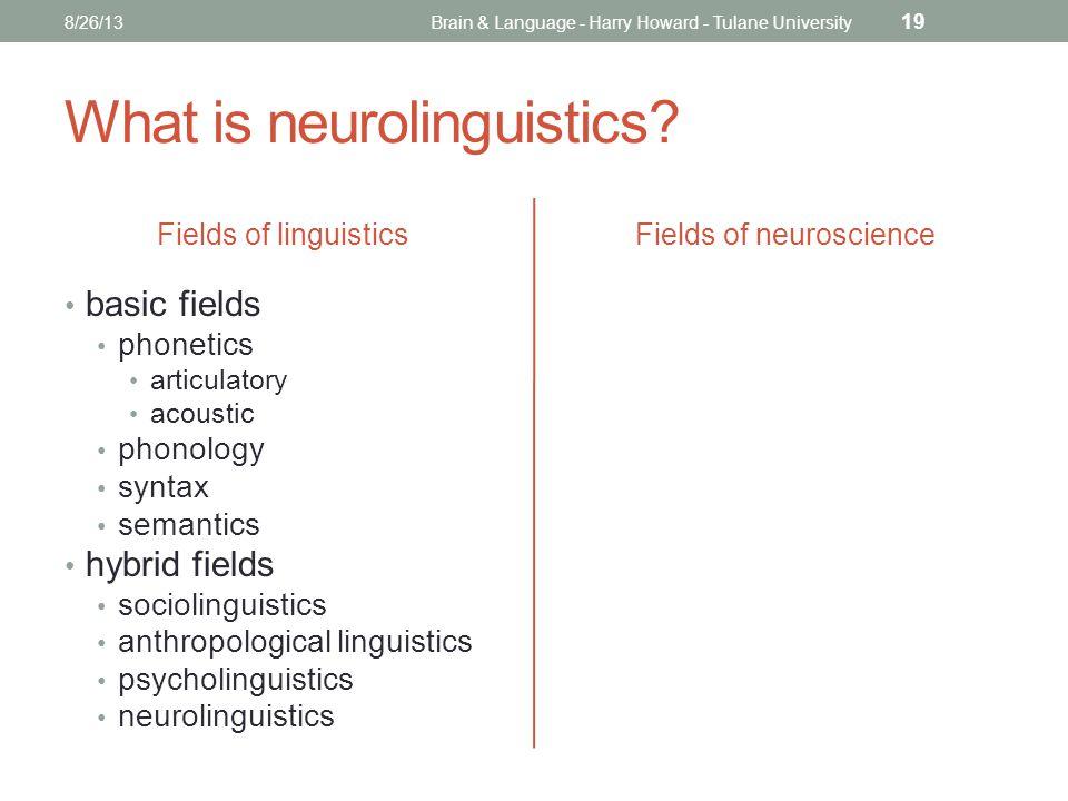 What is neurolinguistics.
