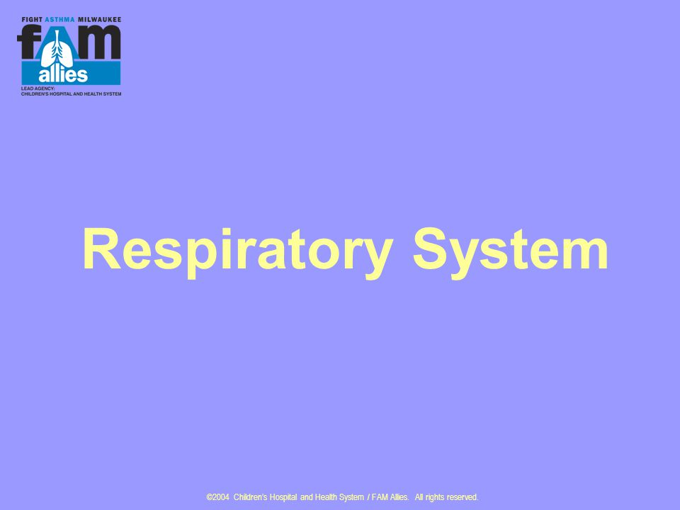 ©2004 Children's Hospital and Health System / FAM Allies. All rights reserved. Respiratory System