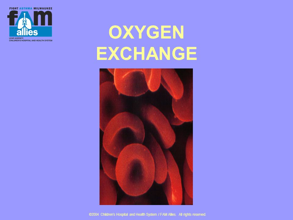 ©2004 Children's Hospital and Health System / FAM Allies. All rights reserved. OXYGEN EXCHANGE