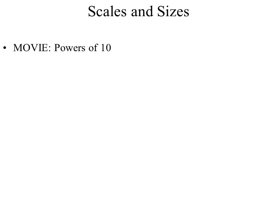 Scales and Sizes MOVIE: Powers of 10