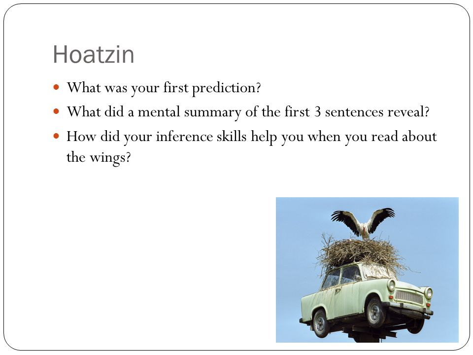 Hoatzin What was your first prediction. What did a mental summary of the first 3 sentences reveal.