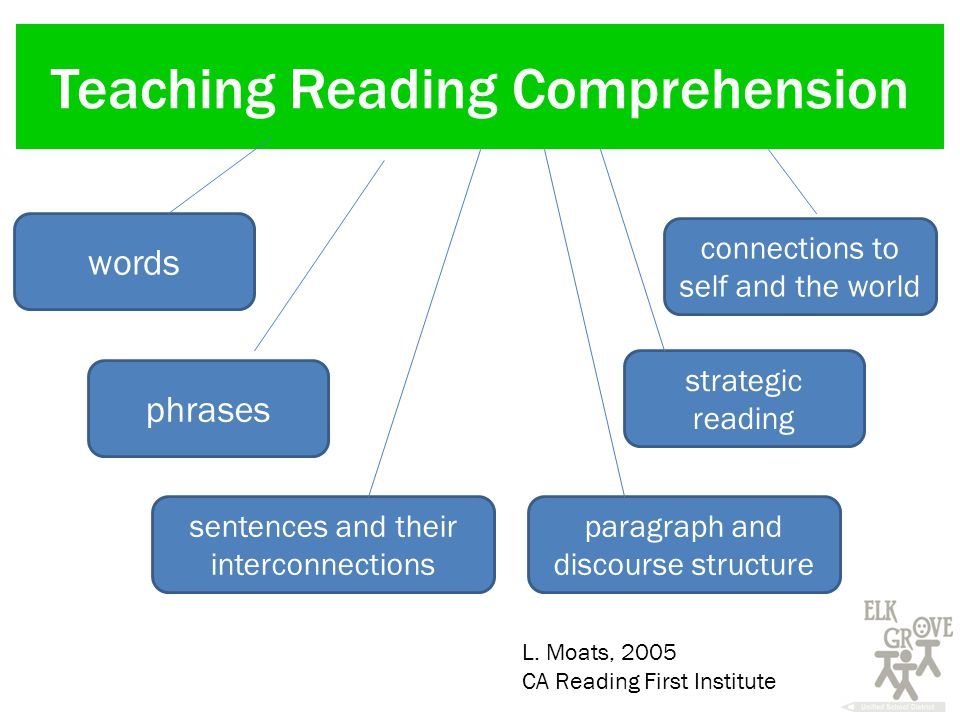 Teaching Reading Comprehension words phrases sentences and their interconnections strategic reading paragraph and discourse structure connections to self and the world L.