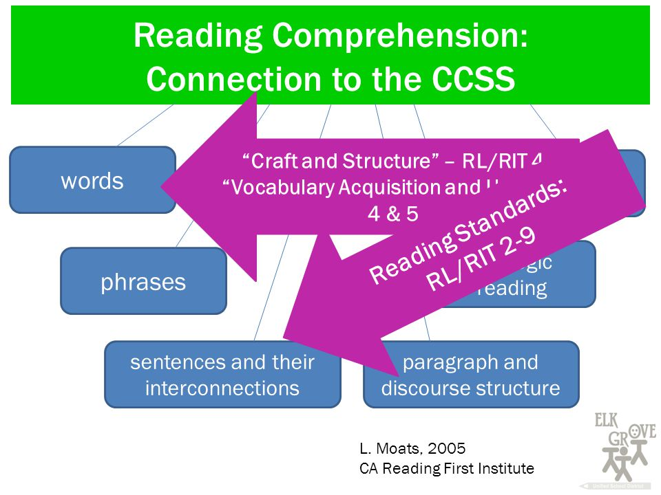 Reading Comprehension: Connection to the CCSS words phrases sentences and their interconnections strategic reading paragraph and discourse structure connections to self and the world L.