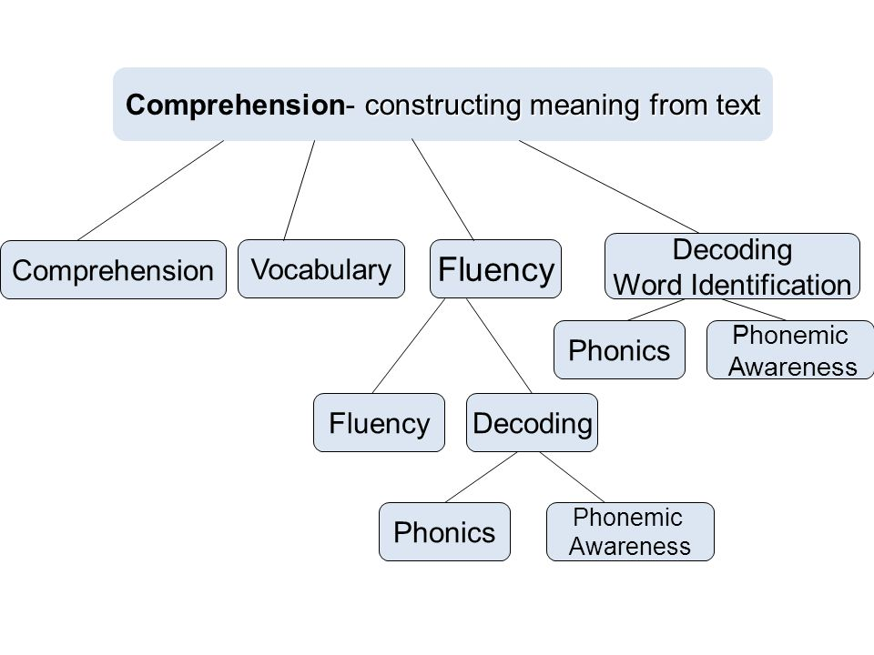 constructing meaning from text Comprehension- constructing meaning from text Phonics Decoding Word Identification Vocabulary Comprehension Phonemic Aw