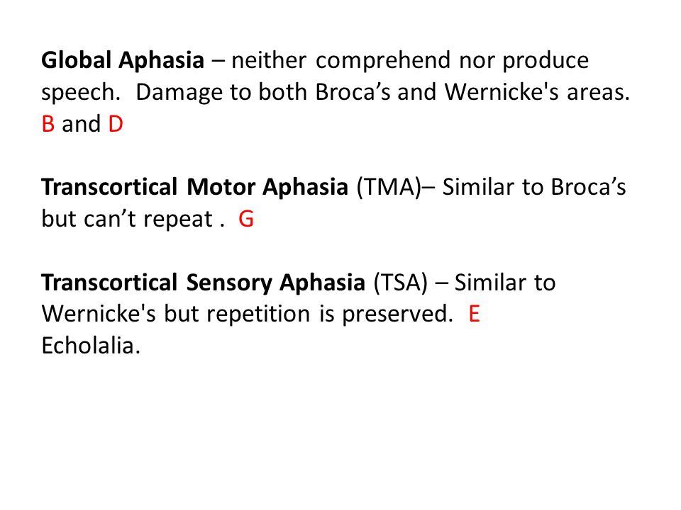 Global Aphasia – neither comprehend nor produce speech.