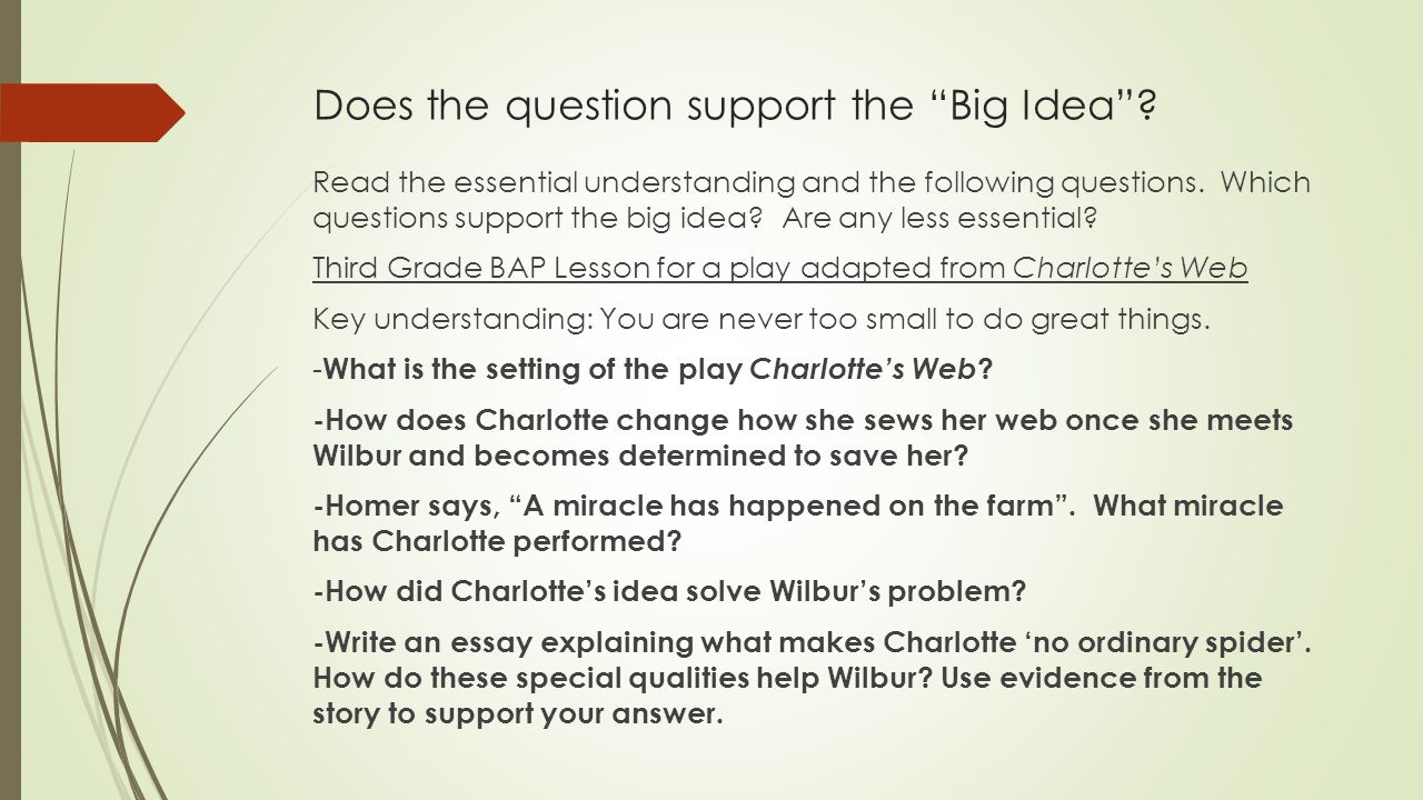 Does the question support the Big Idea .