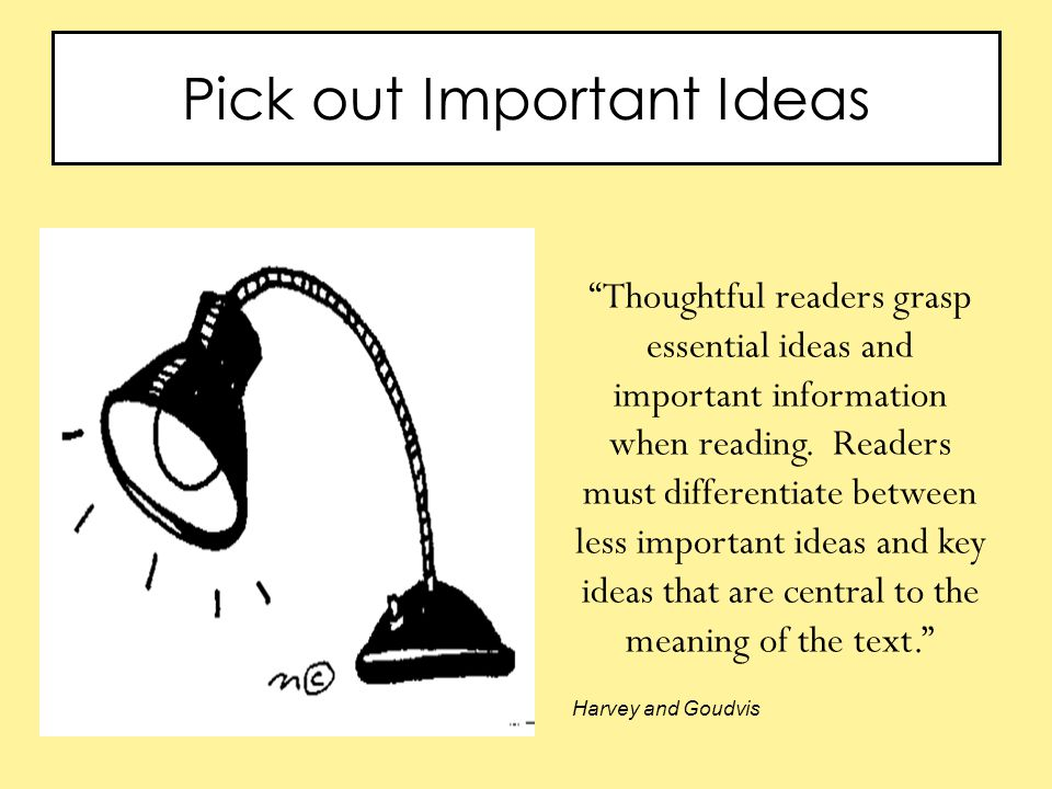 Pick out Important Ideas Thoughtful readers grasp essential ideas and important information when reading.