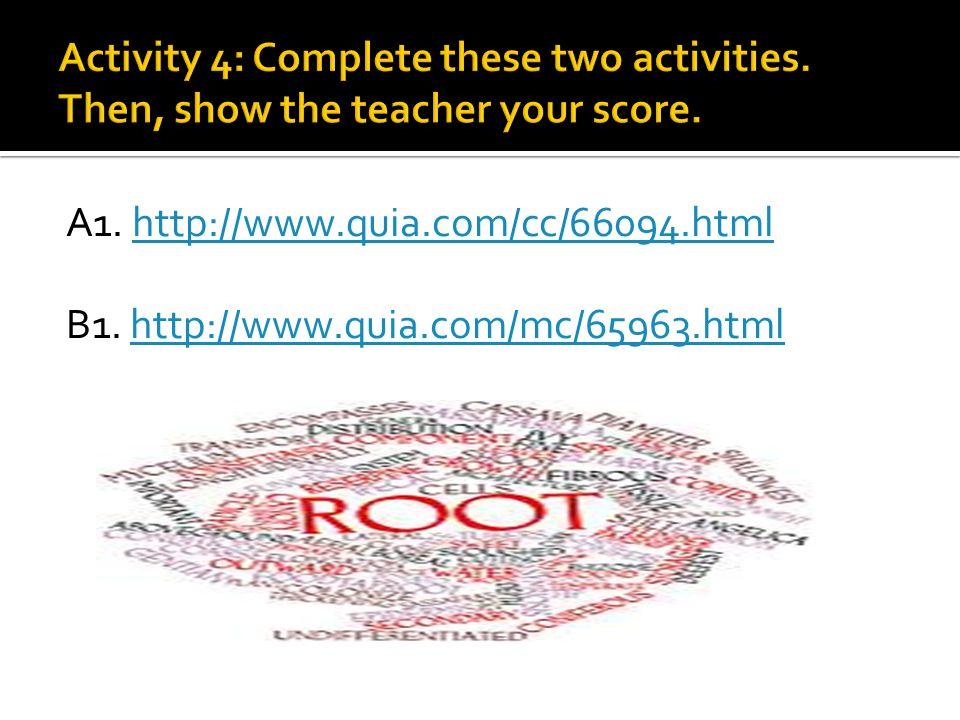 A1. http://www.quia.com/cc/66094.htmlhttp://www.quia.com/cc/66094.html B1. http://www.quia.com/mc/65963.htmlhttp://www.quia.com/mc/65963.html