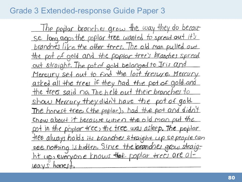 Grade 3 Extended-response Guide Paper 3 80