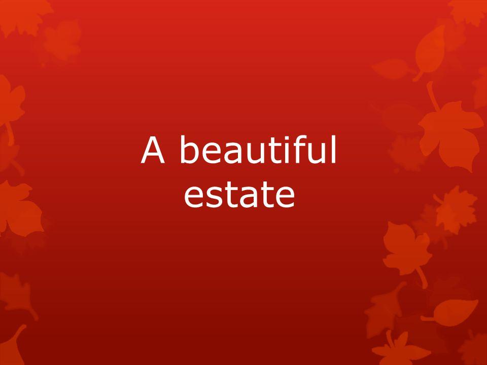 A beautiful estate