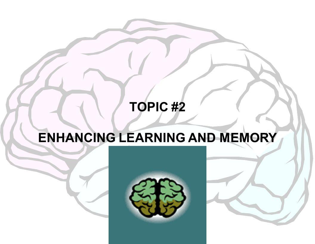 TOPIC #2 ENHANCING LEARNING AND MEMORY