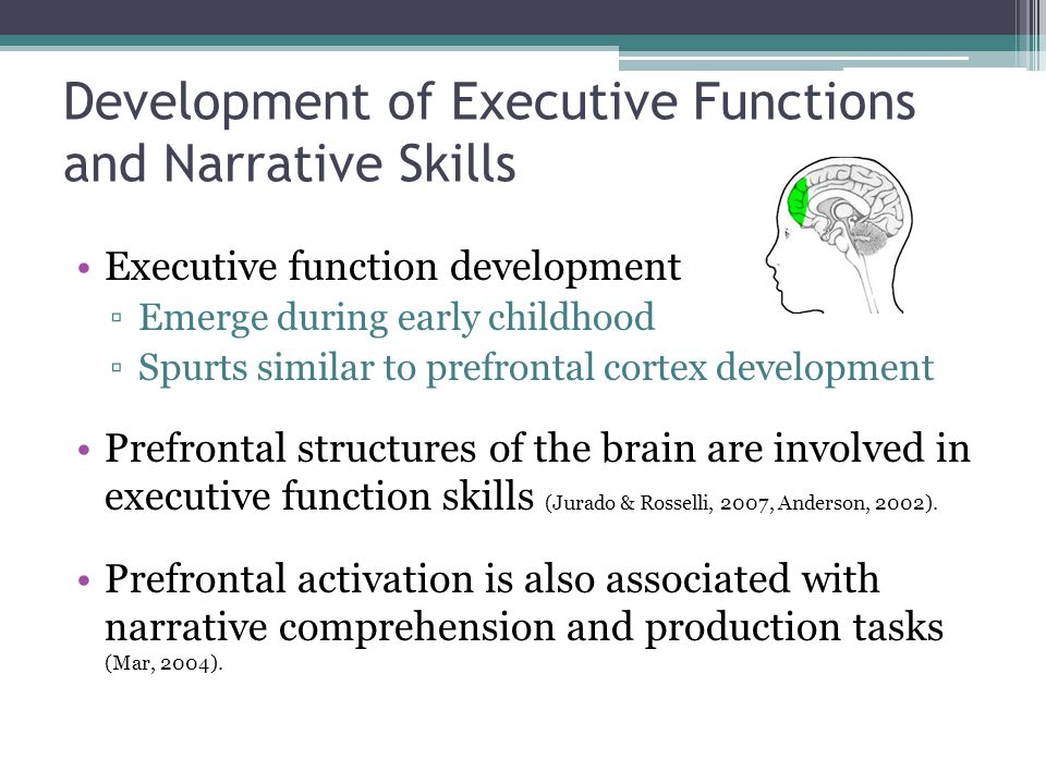 Development of Executive Functions and Narrative Skills Executive function development ▫Emerge during early childhood ▫Spurts similar to prefrontal cortex development Prefrontal structures of the brain are involved in executive function skills (Jurado & Rosselli, 2007, Anderson, 2002).