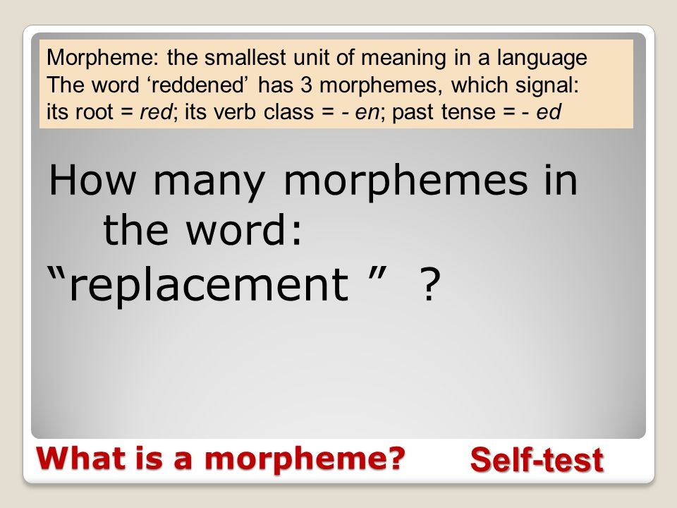 Morphemes Matter Periventricular nodular heterotopia Volunteer needed to read a word.