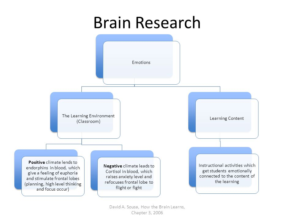 Brain Research Learning and retention are different we can learn something for just a few minutes and then lose it forever.