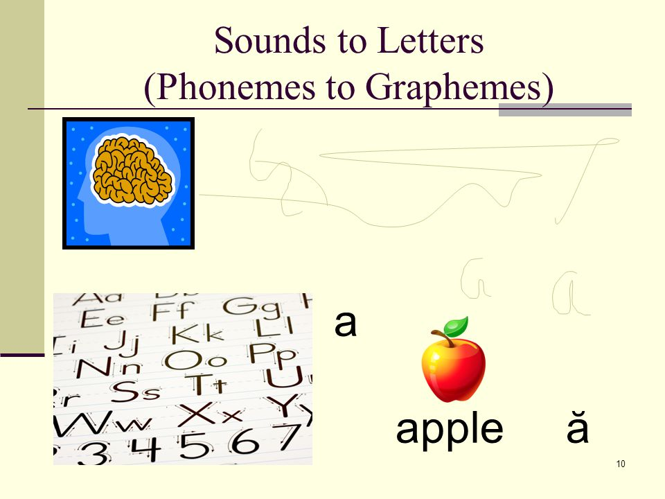 Phonemic Awareness and Learning to Read 9 pi g