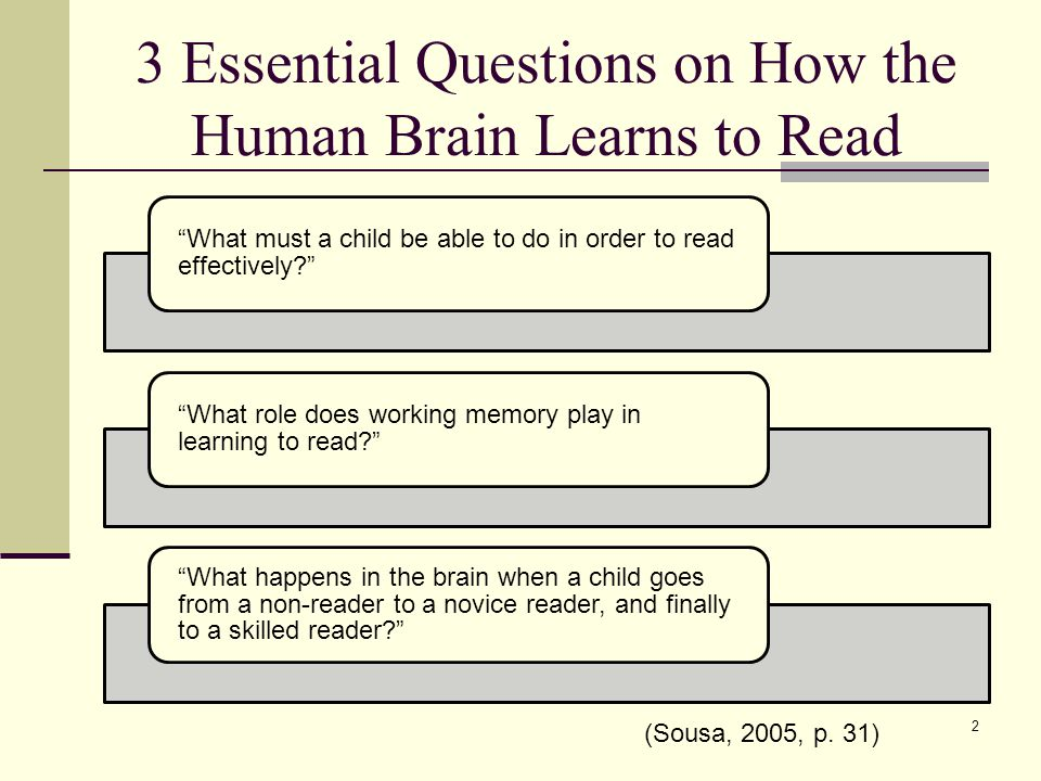 3 Essential Questions on How the Human Brain Learns to Read What must a child be able to do in order to read effectively? What role does working memory play in learning to read? What happens in the brain when a child goes from a non-reader to a novice reader, and finally to a skilled reader? 2 (Sousa, 2005, p.
