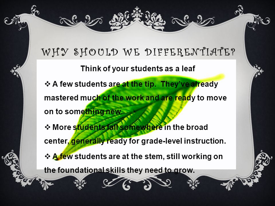 WHY SHOULD WE DIFFERENTIATE. Think of your students as a leaf  A few students are at the tip.