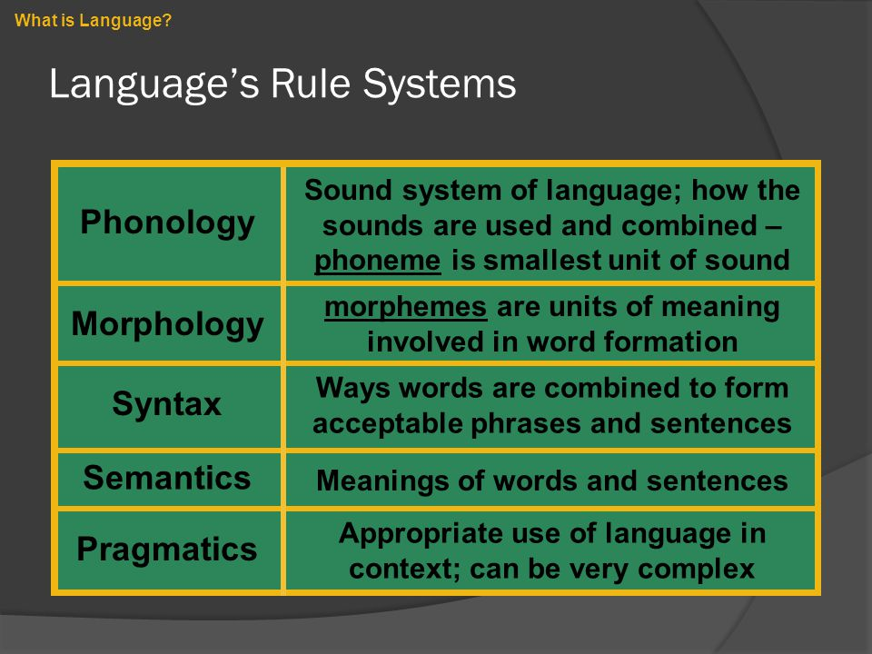 Language's Rule Systems What is Language? Phonology Morphology Syntax Sound system of language; how the sounds are used and combined – phoneme is smal