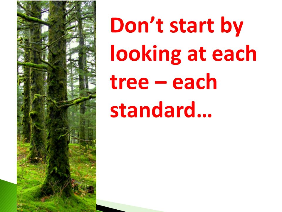 Don't start by looking at each tree – each standard…