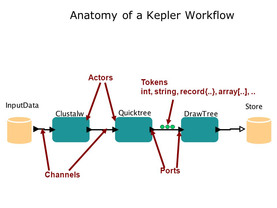 Anatomy of a Kepler Workflow Actors Channels Ports Tokens int, string, record{..}, array[..],..