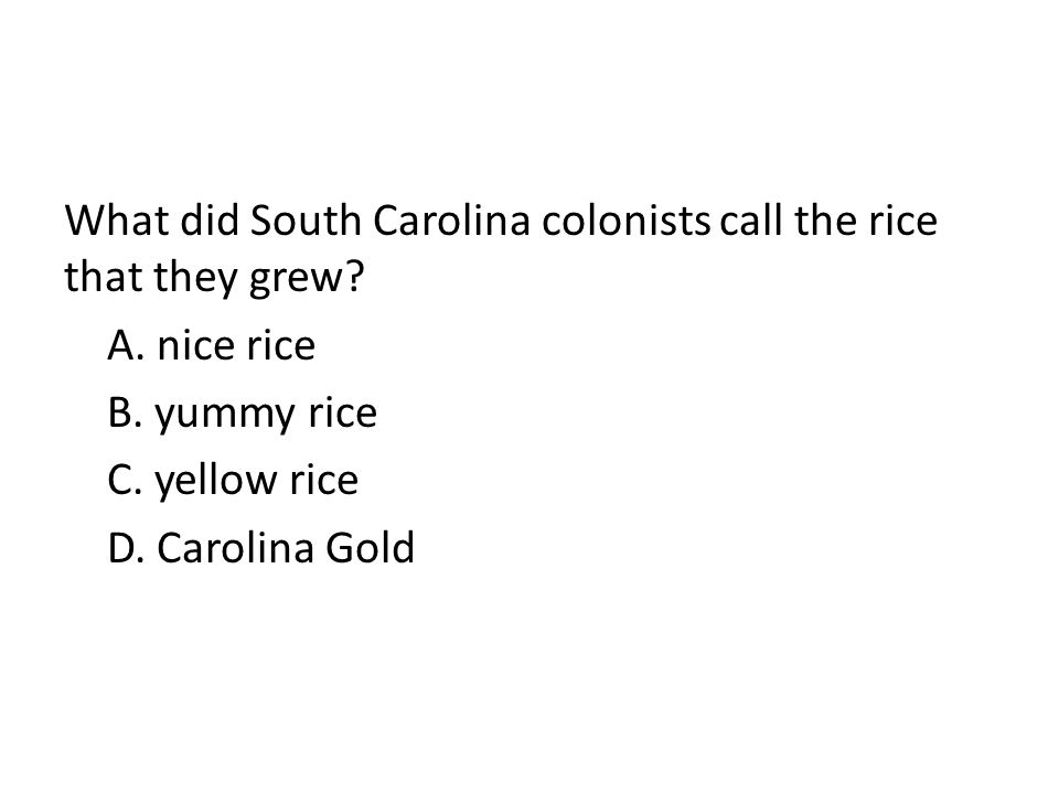 What did South Carolina colonists call the rice that they grew? A. nice rice B. yummy rice C. yellow rice D. Carolina Gold