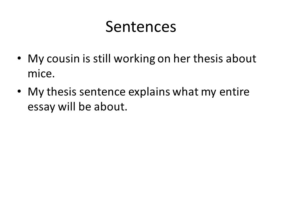 Sentences My cousin is still working on her thesis about mice.