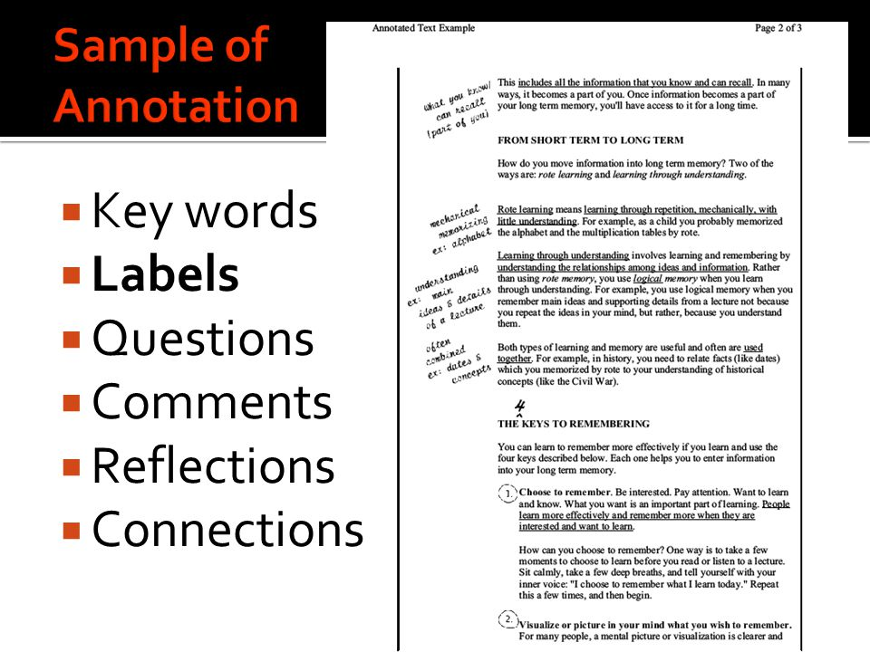  Key words  Labels  Questions  Comments  Reflections  Connections