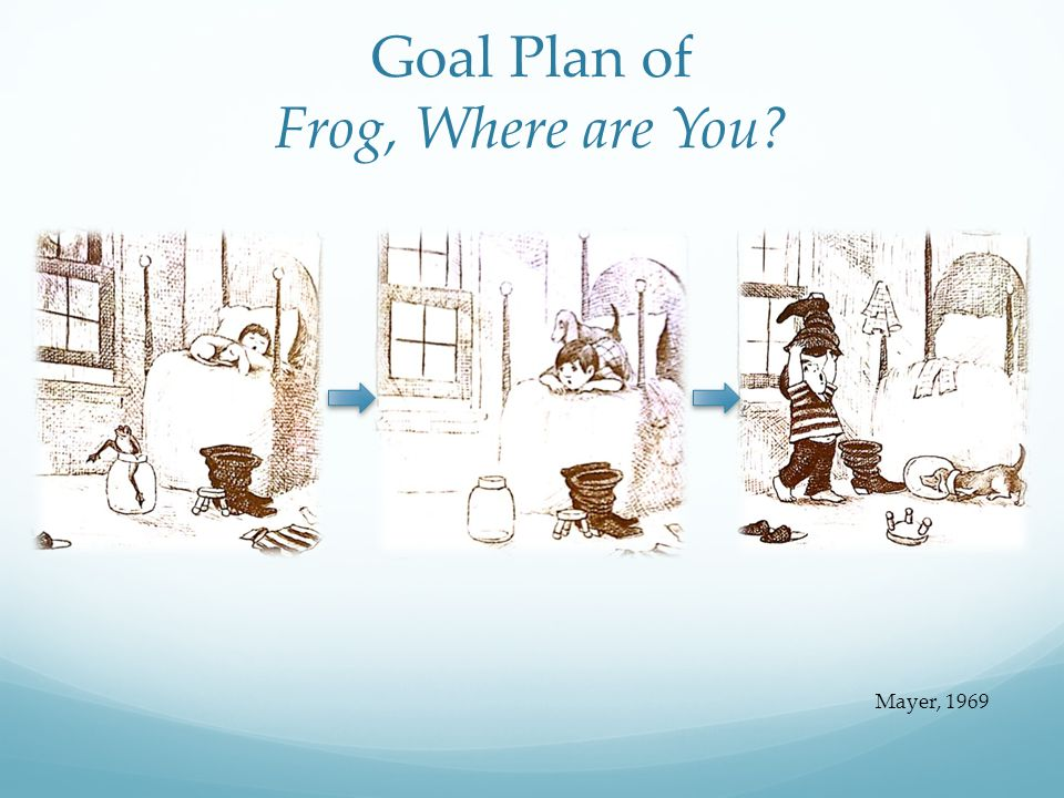 Goal Plan of Frog, Where are You? Mayer, 1969