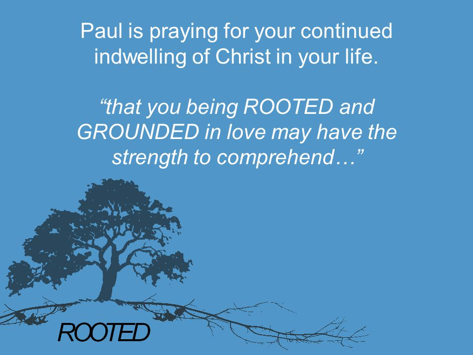 """Paul is praying for your continued indwelling of Christ in your life. """"that you being ROOTED and GROUNDED in love may have the strength to comprehend…"""