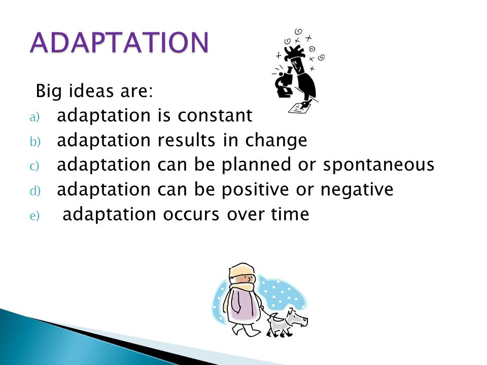 Big ideas are: a) adaptation is constant b) adaptation results in change c) adaptation can be planned or spontaneous d) adaptation can be positive or