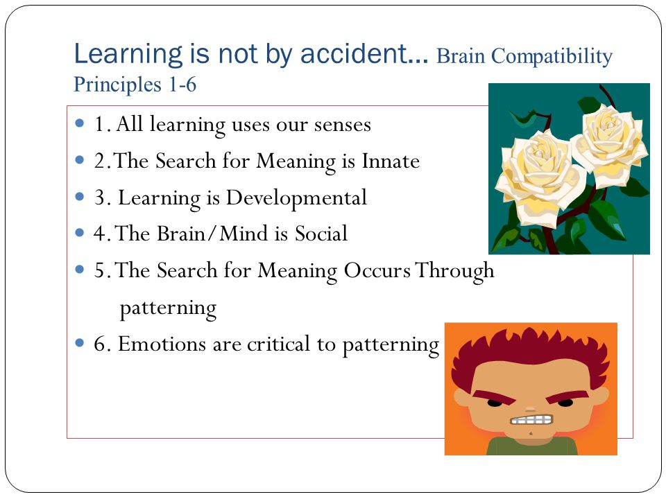 Learning is not by accident… Brain Compatibility Principles 1-6 1.