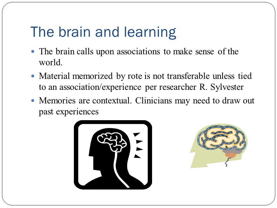 The brain and learning The brain calls upon associations to make sense of the world.