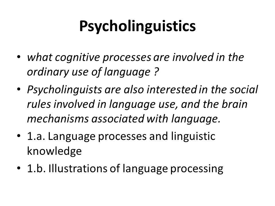 Psycholinguistics 2.a.