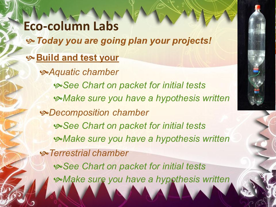 Eco-column Labs  Today you are going plan your projects!  Build and test your  Aquatic chamber  See Chart on packet for initial tests  Make sure