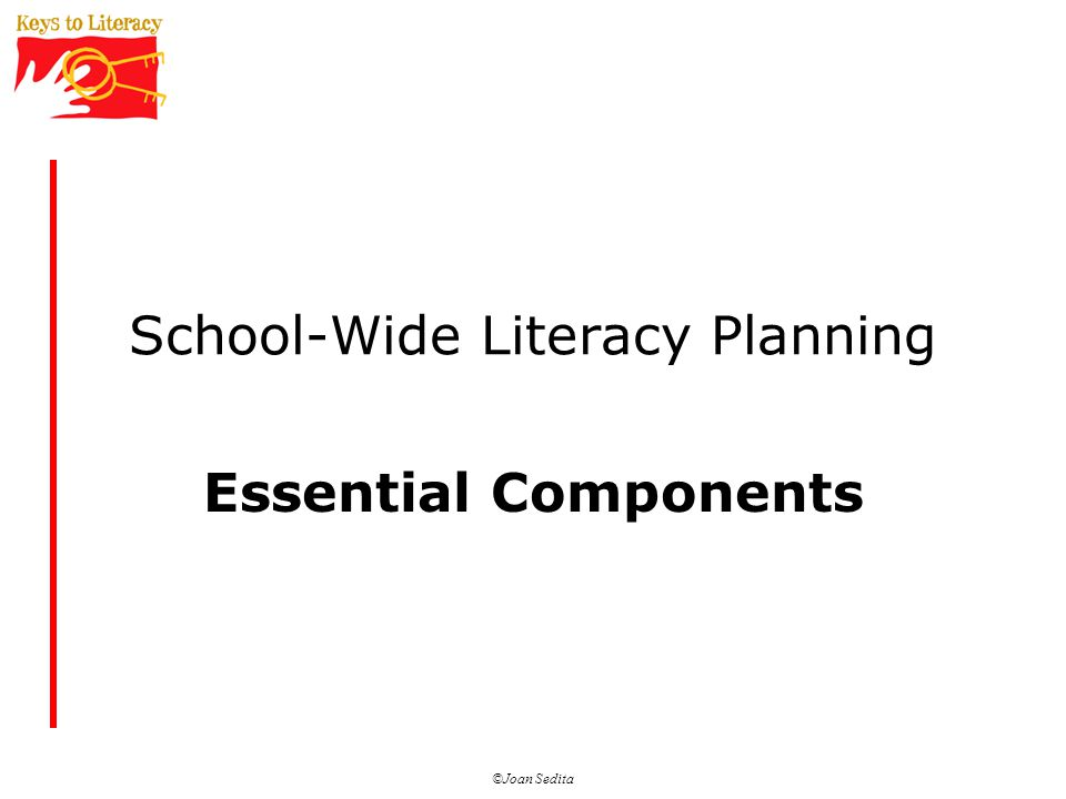 ©Joan Sedita School-Wide Literacy Planning Essential Components