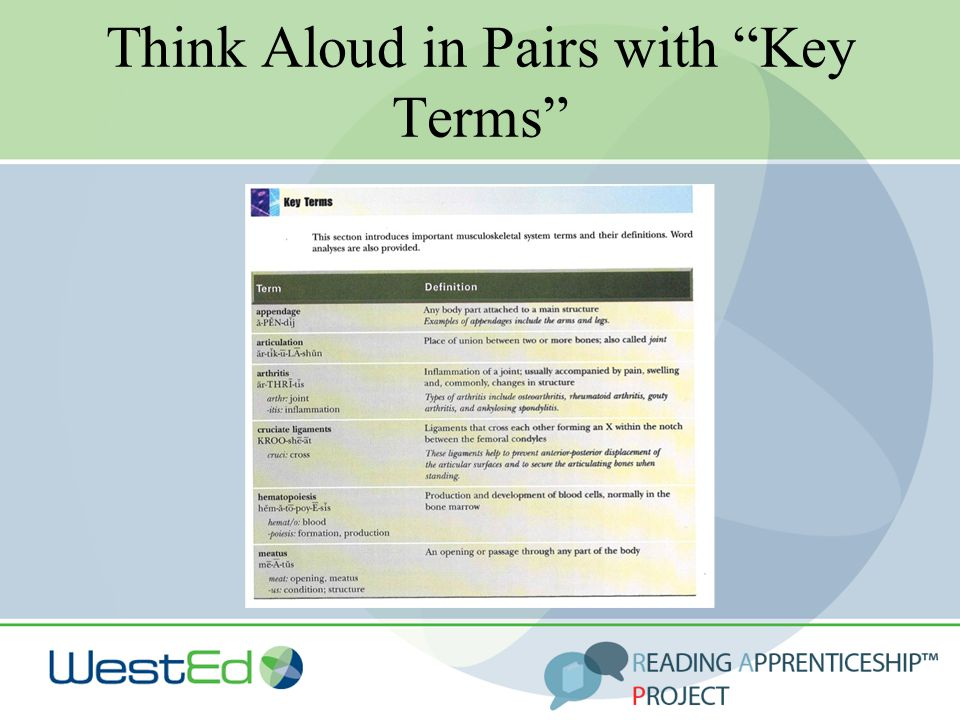 """Think Aloud in Pairs with """"Key Terms"""""""
