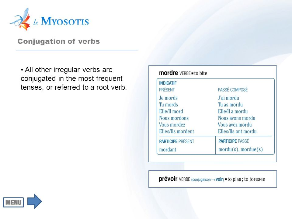Conjugation of verbs All other irregular verbs are conjugated in the most frequent tenses, or referred to a root verb.